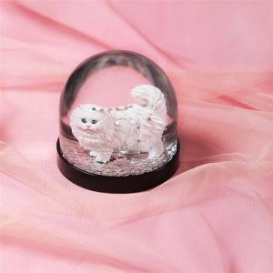 Snowglobe XL (CAT)